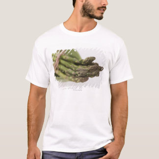 Bunch of asparagus T-Shirt
