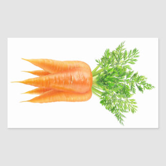 Bunch of carrots rectangular sticker