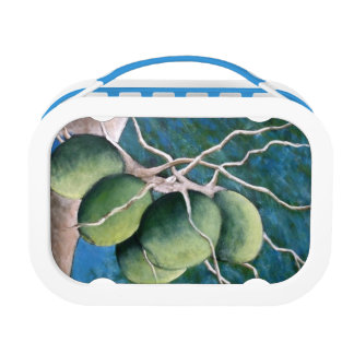Bunch of Coconuts on The Tree Lunch Box