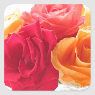 bunch of different roses square sticker