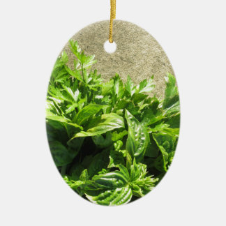 Bunch of fresh herbs ceramic oval decoration