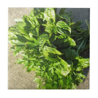 Bunch of fresh herbs tile
