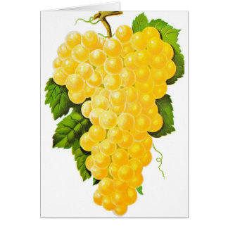 Bunch of Grapes Card