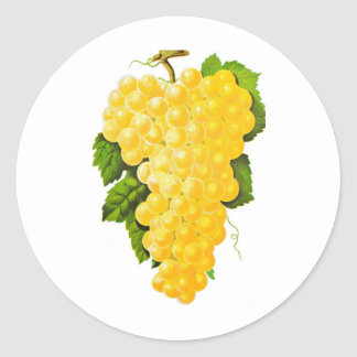 Bunch of Grapes Classic Round Sticker