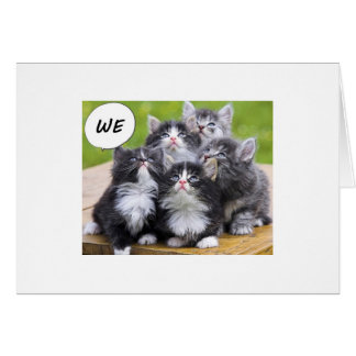 BUNCH OF KITTENS WISH SOMEONE A HAPPY BIRTHDAY GREETING CARD