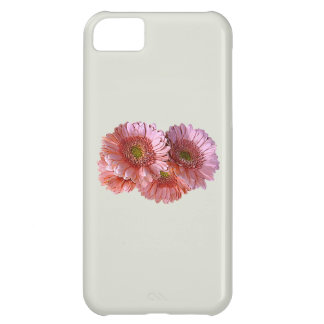 Bunch of Pink Shasta Daisies iPhone 5C Covers