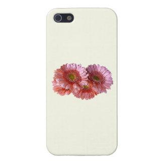 Bunch of Pink Shasta Daisies iPhone 5 Case