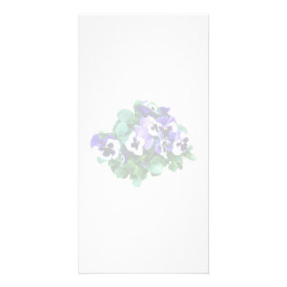 Bunch of Purple and White Pansies Picture Card