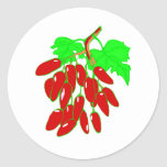 Bunch of red peppers round sticker