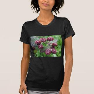 Bunch of Unripe Blackberries Tee Shirts