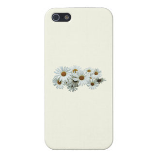 Bunch of White Daisies Cases For iPhone 5