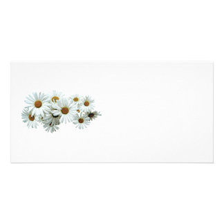 Bunch of White Daisies Photo Card