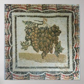 Bunch of white grapes Roman mosaic Print