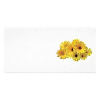 Bunch of Yellow Daisies Photo Card Template