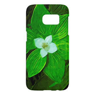 Bunchberry White Wildflower Abstract
