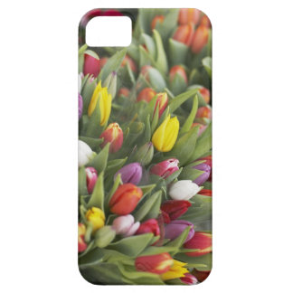 Bunches of colorful tulips barely there iPhone 5 case