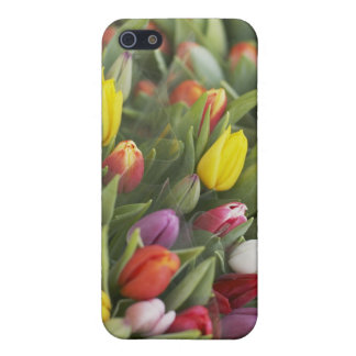 Bunches of colorful tulips case for iPhone 5/5S