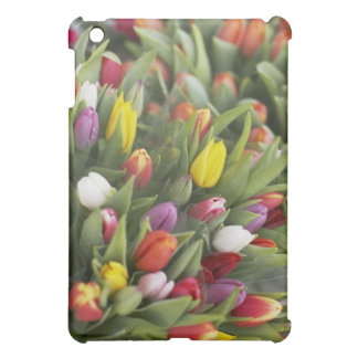 Bunches of colorful tulips case for the iPad mini