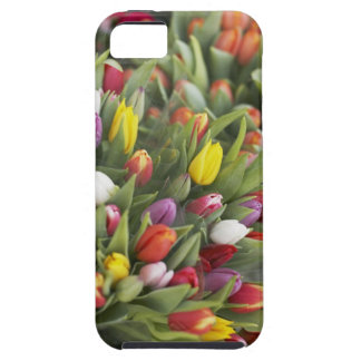 Bunches of colorful tulips case for the iPhone 5