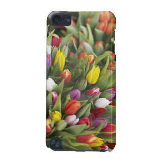 Bunches of colorful tulips iPod touch 5G covers