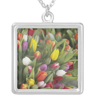 Bunches of colorful tulips silver plated necklace