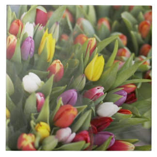 Bunches of colorful tulips tile