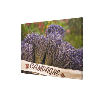 Bunches of lavender for sale, Vence, Provence, Stretched Canvas Print