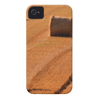 Bundles of Crops iPhone 4 Case-Mate Cases