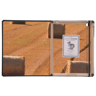 Bundles of Crops Cases For iPad