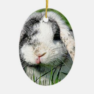 Bungee Christmas Ornament
