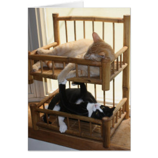Bunk Bed Brothers Greeting Card
