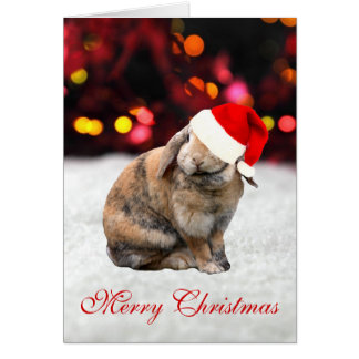 Bunnie rabbit cute photo custom Christmas Card