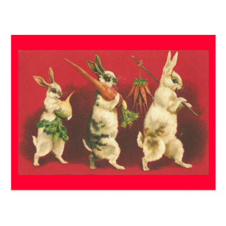 Bunnies and Carrots Postcard