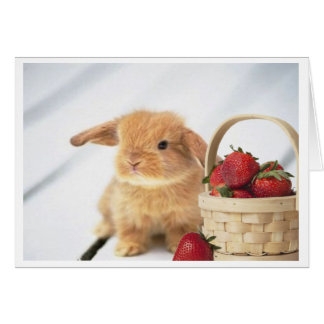 Bunnies and Strawberries Greeting Card