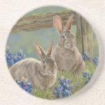 Bunnies & Bluebonnets Drink Coaster