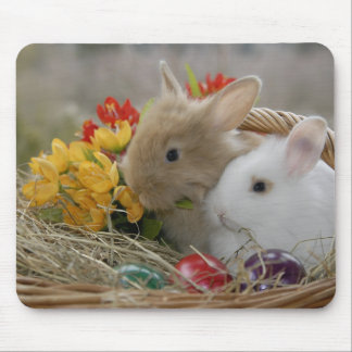 Bunnies In Basket Mouse Pad
