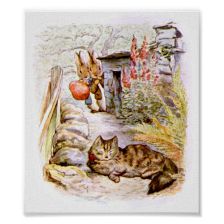 Bunnies Watching Cat Artwork Poster
