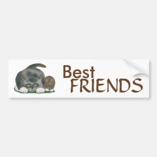 Bunny and Kitten are Best Friends Car Bumper Sticker