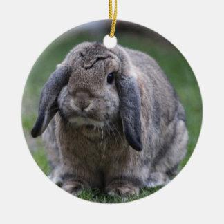 bunny christmas ornament