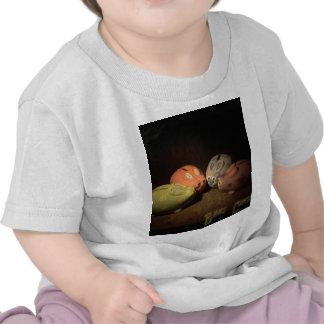 Bunny Conspiracy Shirts