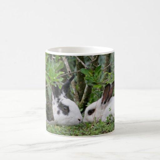Bunny Couple Basic White Mug