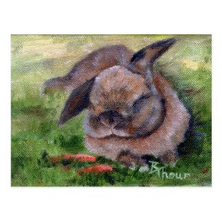 Bunny Dreams Post Cards