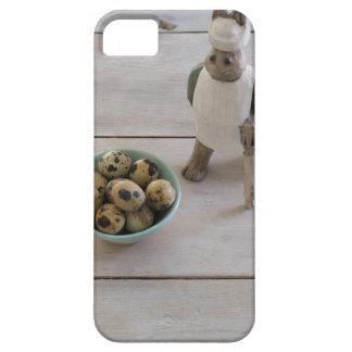 Bunny & eggs in a bowl barely there iPhone 5 case