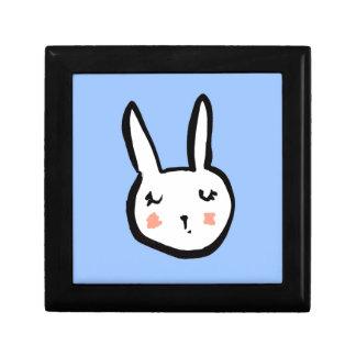 Bunny Face Blue Gift Box