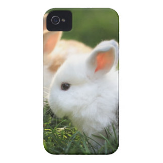 bunny friends iPhone 4 case