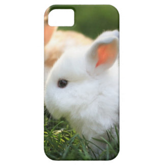 bunny friends iPhone 5 covers