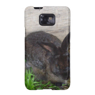 Bunny image galaxy SII covers