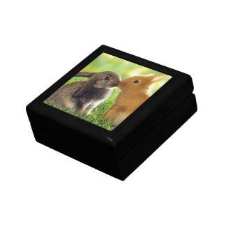 Bunny Kiss Gift Box