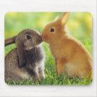 Bunny Kiss Mouse Mat