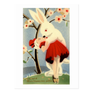 Bunny Love Post Cards